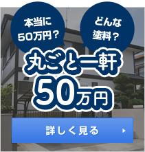 丸ごと一軒50万円